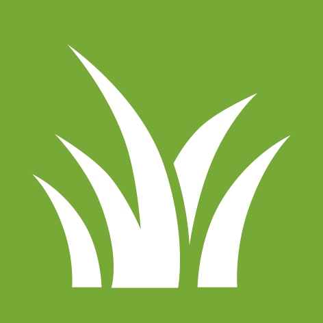 DSA logopedia